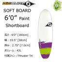 """【送料無料】2016 BIC SURF ビック サーフボード 6'0"""" PAINT Shortboard ショートボード ソフトボード"""