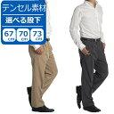 【裾上げ済み 選べる股下67/70/73cm】スラックス メンズ テンセル ツータック パンツ ビジ...
