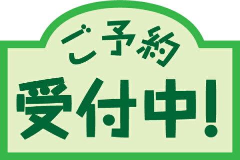 【1月予約】 Fate/Grand Order EXQフィギュア ルーラー/マルタ 1月19日入荷予定