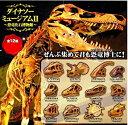 【定形外対応】 ダイナソーミュージアムII 恐竜化石博物館 全12種セット