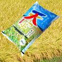 福島県オリジナル品種天のつぶ 白河産地米 米屋仕立て白米5kg(厳選希少米)28年度新米
