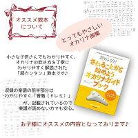 ZINプラスチックオカリナ入門セット(クリスマスラッピングセット)