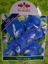 種!、メール便利用で送料無料!バタフライピー種(蝶豆、チョウマメ、クリトリア、アンチャン)種・タイ産