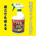 For HOKKO Hana guard AL 920 ml rose  disease black spot [_ Kanto tomorrow for comfort]