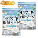 セスキ炭酸ソーダ 5kg×2袋 アルカリ洗浄剤 [02] NICHIGA(ニチガ)