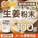 生姜粉末 国内粉末殺菌 ジンジャー 100g(スプーン付) 【送料無料】【ゆうメール
