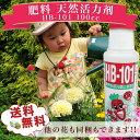 HB-101 100cc 肥料 天然活力剤 hb101 送料無料 HB 101