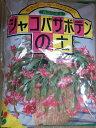 シャコバサボテンの植え替え株分けに♪花ごころ・シャコバサボテンの土 Compost【用土】【培養土】