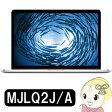 Apple MacBook Pro Retinaディスプレイ 2200/15.4 MJLQ2J/A Macノートパソコン【smtb-k】【ky】【KK9N0D18P】