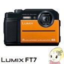 パナソニック コンパクトデジタルカメラ LUMIX DC-FT7-D [オレンジ]【smtb-k】【ky】【KK9N0D18P】