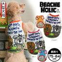 メール便対応 2016年春夏新作 ビーチェホリック フレンズパイルタンク サイズ 3L 4L 大型犬用 BEACHE HOLIC犬服 レトリバー