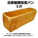 自家製酵母食パン 3斤