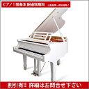 【送料無料 ※離島等一部地域除く】FEURICH(フォイリッヒ)Mod.161 - Professional White Polish【新品グランドピアノ】【新品ピアノ】..