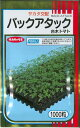 野菜種 台木バックアタック50粒 サカタ交配
