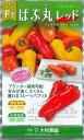 野菜種パプリカぱぷ丸 8粒大和農園