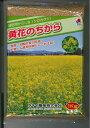緑肥 からしな黄花のちから  1kgタキイ種苗