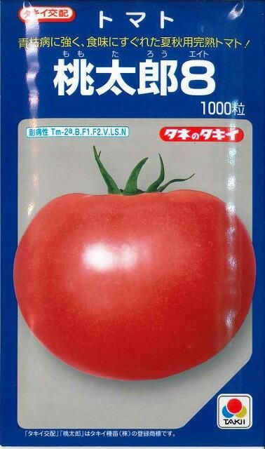 送料無料!野菜種 大玉トマト桃太郎81000粒 タキイ交配 萎凋病レース2に耐病性の夏秋用完熟トマト!