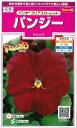 オール1割引き!花の種 パンジー パシオ クリアスカーレット 0.1ml サカタのタネ