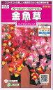オール1割引き!花の種 金魚草 フローラルシャワーバイカラーミックス 0.05ml  サカタのタネ