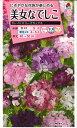 花の種 オール1割引き!美女なでしこ カレイドスコープミックス 0.1ml タキイ種苗