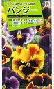 花の種 オール1割引き!パンジーシャロンジャイアント混合 0.3mlタキイ種苗