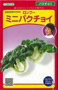 中国野菜 ミニ パクチョイ 3ml 武蔵野交配