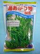 ショッピング夏 野菜種 枝豆湯あがり娘 約2000粒カネコ育成