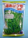 野菜種 枝豆湯あがり娘 約2000粒カネコ育成