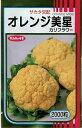 野菜種 カリフラワーオレンジ美星 2000粒サカタのタネ