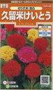 花の種 オール1割引き! けいとう久留米けいとう 切り花用混合 小袋 サカタのタネ