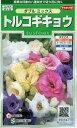 花の種 オール1割引き!トルコギキョウダブルミックス 0.2mlサカタのタネ
