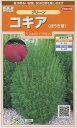 花の種 オール1割引き!コキア(ほうき草)グリーン 小袋サカタのタネ