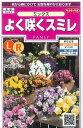 花の種 オール1割引き!よく咲くスミレミックス 40粒サカタのタネ