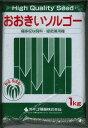 緑肥ソルガムおおきいソルゴー(イネ科)1kgカネコ種苗