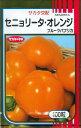 野菜種 ピーマンフルーツパプリカセニョリータ・オレンジ 100粒サカタのタネ