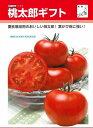 ショッピングトマト トマト桃太郎ギフト50粒