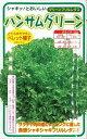 野菜種 レタスハンサムグリーン100粒