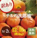 【遠州浜北大平産】 テルの次郎柿【訳あり品 約4キロ・M〜2...