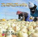 早割特価8%OFF中♪【たまねぎ】【玉ねぎ】【浜松篠原産】【...