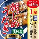 朝じめうなぎ 蒲焼き 1尾 (1尾約150g)【冷蔵便】 国...
