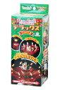 ドリームキャンドルデラックス(クリスマス用)【はなび 花火 ...