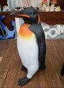 注目度満点!本物?リアル!皇帝ペンギン