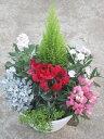 季節の寄せ植え 『冬〜春』 【本州のみ送料無料】 【北海道、四国、九州は別途300円】