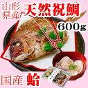 お食い初め 鯛 はまぐり セット 600g 送料無料 敷紙 鯛飾り 天然真鯛 焼き鯛 お祝い