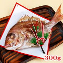 お食い初め 鯛 300g 山形県産 天然 真鯛焼き 敷き紙 飾り 冷蔵 節句 100日祝い 祝い鯛
