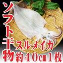【あす楽】山形県産 自家製ソフト干物セット スルメイカ するめ 一夜干し1枚