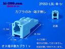 2p050-lbl-m-tr