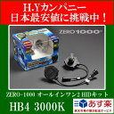 ZERO1000の最新型【 ALL IN ONE HID TYPE-2】