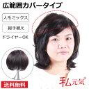 ウィッグ ウイッグ 部分  総手植え人毛ミックス 【送料無料】人毛30%、高品質耐熱繊維70% 私元気 部分   かつら カバーピース…