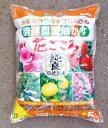 肥料 醗酵固形油かす 花ごころ 中粒 5kg×4個【ケース販売】 05P01Oct16